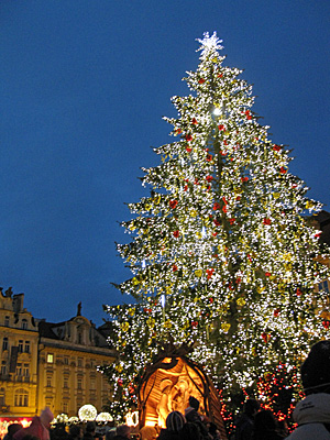 Praag_kerstboom.jpg