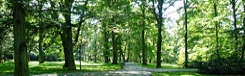 stromovka park praag
