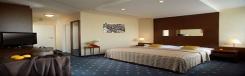 hotel fortuna west praag