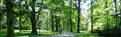 stromovka-park-praag