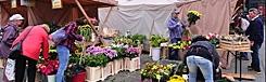 boerenmarkt pankrac