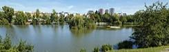 hamersky pond prague praag